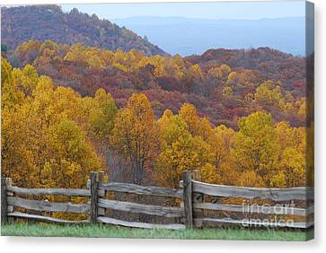 Canvas Print featuring the photograph Fall Blend by Eric Liller