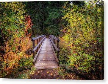 Canvas Print featuring the photograph Fall Bridge by Cat Connor