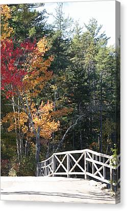 Fall Bridge Canvas Print by Sue Mayor
