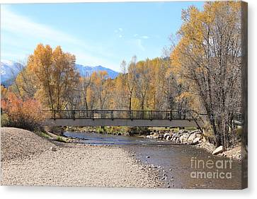 Fall By The Creek Canvas Print by Teresa Thomas