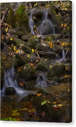 Canvas Print featuring the photograph Fall Cascades by Ellen Heaverlo