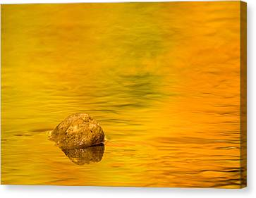 Fall Color Abstract Canvas Print by Adam Romanowicz
