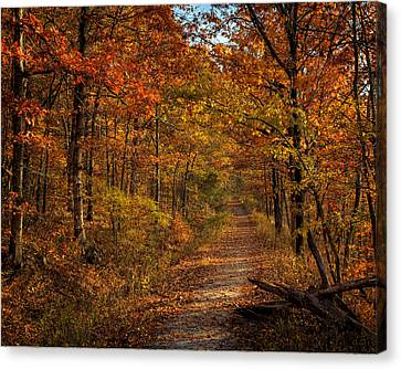 Canvas Print featuring the photograph Fall Color At Centerpoint Trailhead by Michael Dougherty