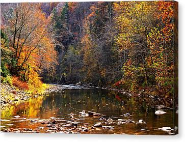 Fall Color Elk River Canvas Print by Thomas R Fletcher