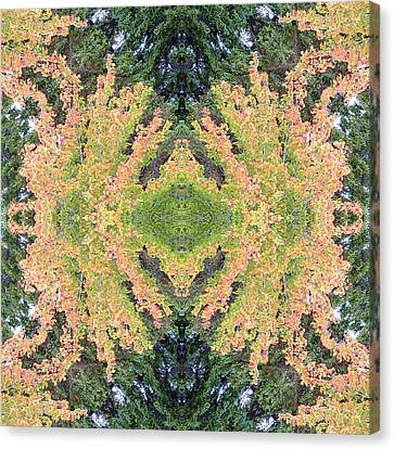 Canvas Print featuring the photograph Fall Color Kaleidoscope by Bill Barber