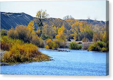 Canvas Print featuring the photograph Fall Color On The Yuba  by AJ Schibig