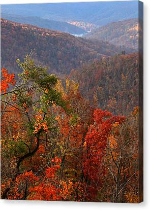 Canvas Print featuring the photograph Fall Color Ponca Arkansas by Michael Dougherty
