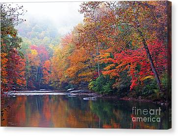 Williams River Canvas Print - Fall Color Williams River Mirror Image by Thomas R Fletcher