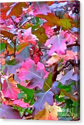 Fall Colors 3 Canvas Print by Ken Lerner