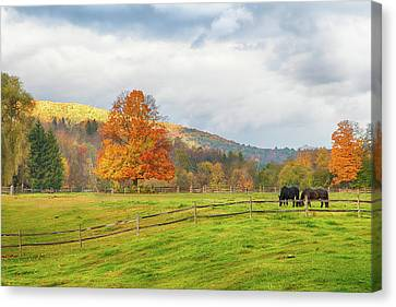 Canvas Print featuring the photograph Fall Colors After The Storm. by Jeff Folger