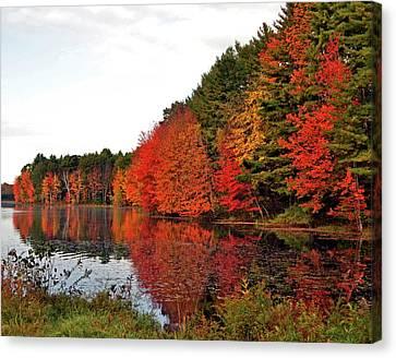 Fall Colors In Madbury Nh Canvas Print by Nancy Landry