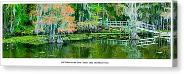 Fall Colors In The Cove Canvas Print by Geoff Mckay