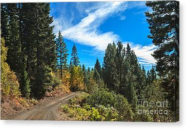 Fall Colors In The Mountains Canvas Print