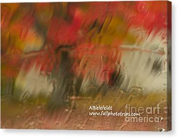 Canvas Print - Fall Colors In The Rain by April Bielefeldt