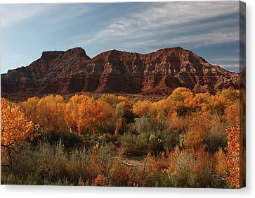 Fall Colors Near Zion Canvas Print