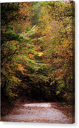 Canvas Print featuring the photograph Fall Colors On The Trail by Shelby Young
