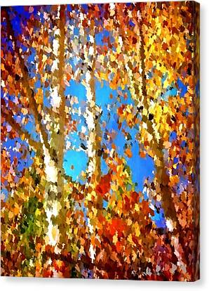Fall Colors Canvas Print by Sarah Jane Thompson