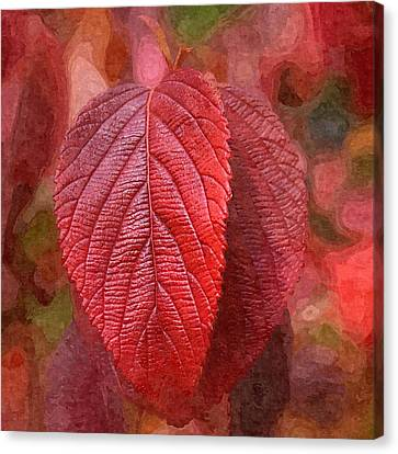 Fall Crimson Canvas Print by Nick Kloepping