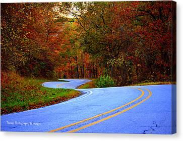 Fall Drive Canvas Print