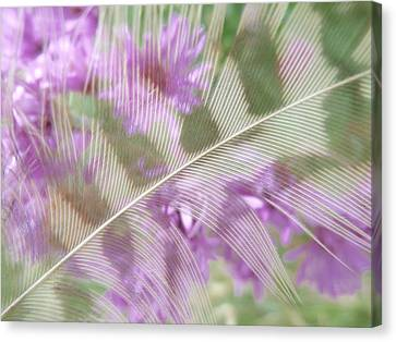 Fall Feather Canvas Print by Tim Good