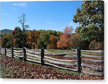 Canvas Print featuring the photograph Fall Fence by Eric Liller