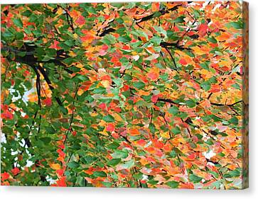 Fall Festivities Canvas Print