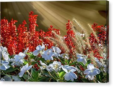 Fall Florals Canvas Print by John Haldane