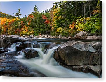 Fall Foliage Along Swift River In White Mountains New Hampshire  Canvas Print