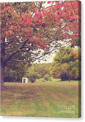 Fall Foliage And Old New England Shed Canvas Print by Edward Fielding