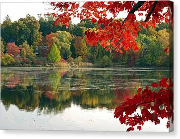 Fall Foliage And Reflections Canvas Print by Darlyne A. Murawski