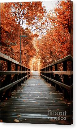 Canvas Print featuring the photograph Fall Foliage In The Heart Of Berlin by Ivy Ho