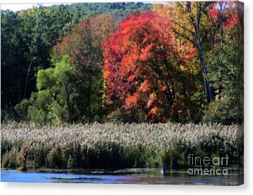 Canvas Print featuring the photograph Fall Foliage Marsh by Smilin Eyes  Treasures