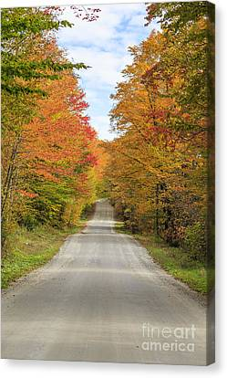 Fall Foliage On The Back Roads Of Vermont Canvas Print by Edward Fielding