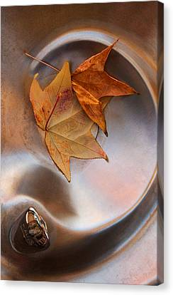 Abstract Water And Fall Leaves Canvas Print - Fall Fountain by Scott Sawyer