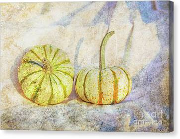 Fall Gourds On Cloth Canvas Print