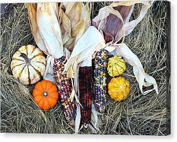 Canvas Print featuring the photograph Fall Harvest On Hay by Sheila Brown