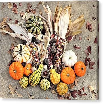 Canvas Print featuring the photograph Fall Harvest by Sheila Brown