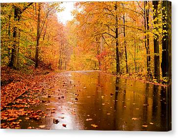 Fall Holidays Canvas Print by Mary Timman