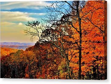 Fall Horizon Canvas Print