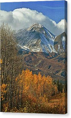 Fall In British Columbia Canvas Print