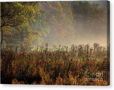 Canvas Print featuring the photograph Fall In Cades Cove by Douglas Stucky