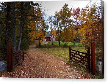 Fall In Hollis Canvas Print
