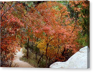 Canvas Print featuring the photograph Fall In Mammoth by Gary Brandes
