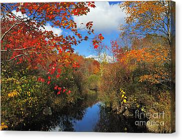 Fall In New England 2 Canvas Print