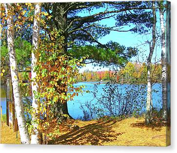 Fall In Phillips Wi Canvas Print by Randy Rosenberger