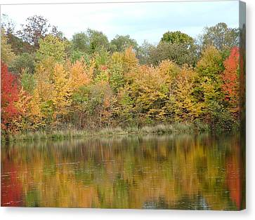 Fall In South Jersey Canvas Print by D R TeesT