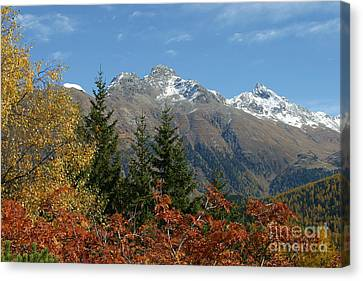 Fall In St. Moritz Canvas Print