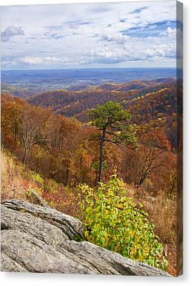 Fall In The Blue Ridge Canvas Print