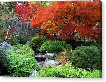 Fall In The Japanese Garden II Canvas Print by Jim Nelson
