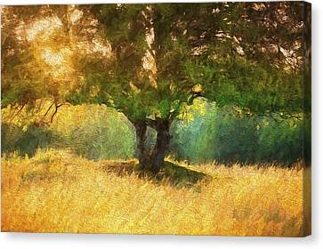Fall In The Meadow Canvas Print
